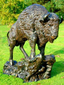 Buffalo Life-Size Bronze Metal Garden Statue