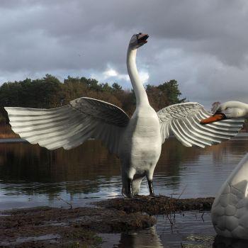 Grand Upright Swan Antique White Metal Garden Statue