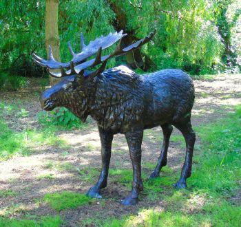 Wild Moose Life-Size Bronze Metal Garden Statue