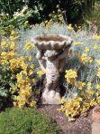 Angel & Shell Stone Birdbath Feeder - Garden Bird Bath