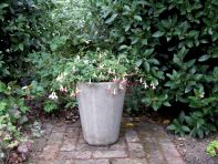 Long Tom Vase Stone Plant Pot - Large Garden Planter