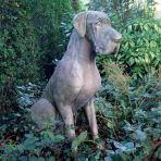 Male Great Dane Dog Stone Sculpture - Large Garden Statue