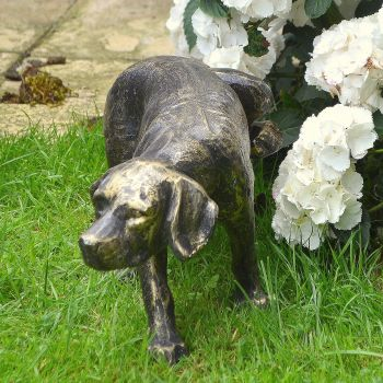 Naughty Dog Bronze Metal Garden Ornament