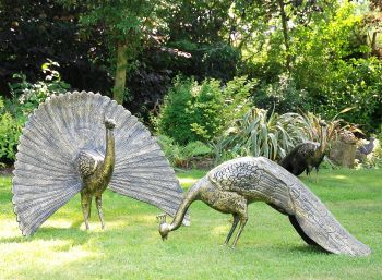 Majestic Peacocks Life-Size Bronze Metal Garden Statues