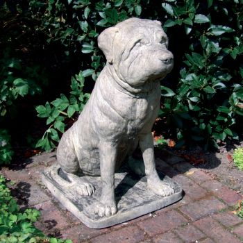 Mastiff Bull Terrier Dog Statue - Large Garden Statue