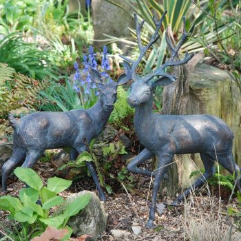 Stag & Doe Bronze Metal Garden Ornaments