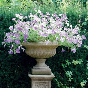 Victorian Stone Plant Pot - Medium Garden Planter