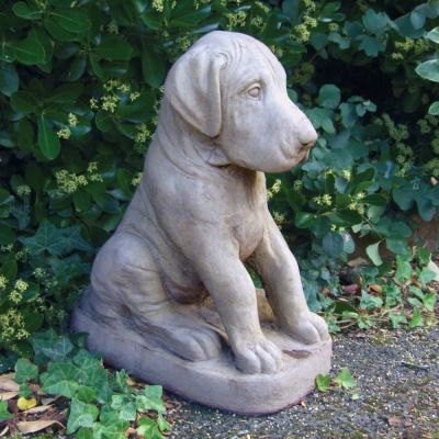 Great Dane Puppy Dog Statue - Large Garden Ornament