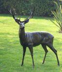 Extra Large Wild Stag Deer Bronze Metal Garden Statue