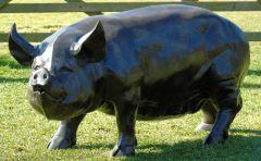 Wild Pig Bronze Metal Garden Statue