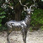 Large Life Size Bronze Stag Sculptures (L) - Deer Garden Ornaments