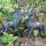 Stag & Doe Bronze Metal Garden Ornaments